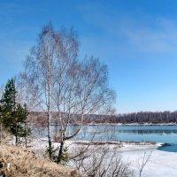Весна сместила зиму :: Галина