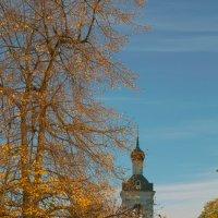 Храм свт. Николая в Голутвино :: Николай Прийменко-Эйсымонт