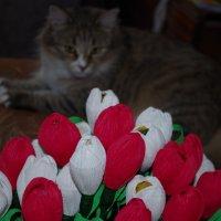 Весна :: Марина Сорокина