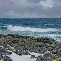 Северный ледовитый океан :: Ирэна Мазакина