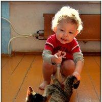 Зачем кошкам хвост? :: Лариса Красноперова