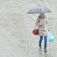 Дождь :: Константин Николаенко