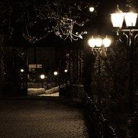 Ночь, улица, фонарь... :: Анастасия Матвиец