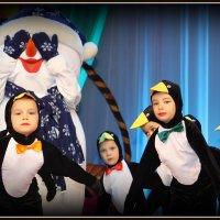 Пингвины :: Татьяна Бутко