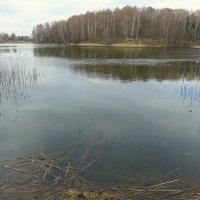 Озеро в Талашкино. :: Игорь