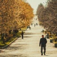 Весна :: Vladimir Donchenko