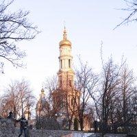 Под куполом :: Александра Шарий