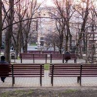 на закате :: Александра Шарий