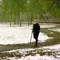 Отрыжка зимы :: Валерий Талашов