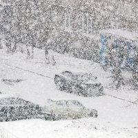 весенний снегопад :: Надежда Шемякина