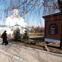 На территории монастыря. :: Андрей Зайцев