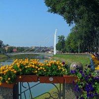 Набережная реки Лопань в Харькове. :: Светлана Росинская