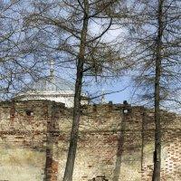 Монастырские стены. :: Yuri Chudnovetz