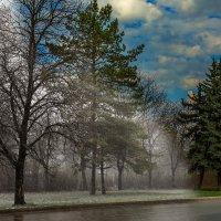 Весна :: Вячеслав Филиппов