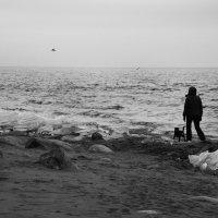 Хмурое утро на Балтике :: Мария Кондрашова
