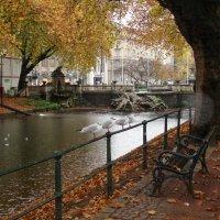 Осень в Дюссельдорфе :: Александр Беляков