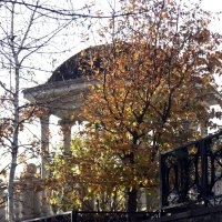 Осень в городе :: Мария Климова