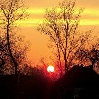 Горящее солнце :: Alla Kachuro