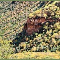 В глубине кратера вулкана :: Евгений Печенин