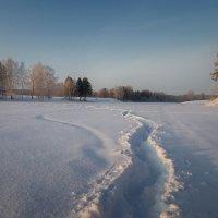 Штрихи уходящей зимы... :: Владимир Комышев