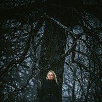 Winter winds :: Дмитрий Егоров