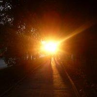 Солнце :: Жанна Тютюева