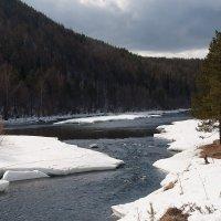 река Ивдель :: Марат Шарипов