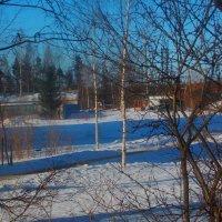 Воспоминание  о нашей недолгой зиме - 2 :: Фотогруппа Весна - Вера, Саша, Натан