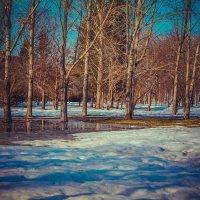 Ранняя весна :: Darya Korobova