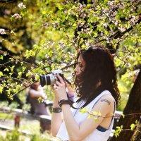 Японский сад :: Keylee Fenn