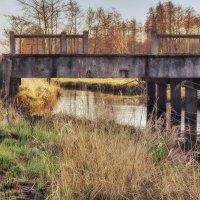 Старый мост :: vik zhavoronka