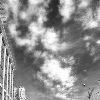 Парю и вниз гляжу с небесной кручи :: Ирина Данилова