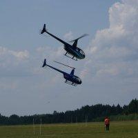 Параллельные полеты Robinzon R44 :: Олег Чернов