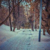 Завораживающий пейзаж :: Darya Korobova