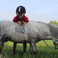 Для детей и лошадки поменьше :: Александра Карпушкина