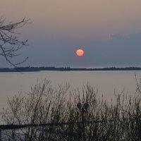 Свет уходящего солнца :: Анастасия Меркулова