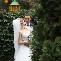 Анна и Дмитрий. 21/09/13 :: Аня Манузина