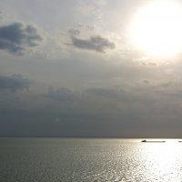 Волга :: Анастасия Курганова