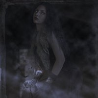 ..лунная ночь :: Рузана Амири