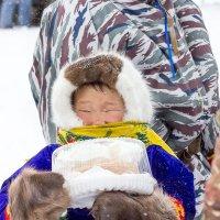Дети Севера. :: Margarita Shrayner