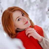 Зимний сад.2. :: Валера Шаповалов