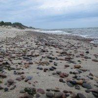 У моря, Балтийского моря... :: Людмила Жданова