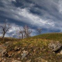 Время собирать камни :: Влад Шерман