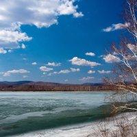 Весна апрель :: Светлана