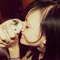 Юлия и котёнок :: Mister FoX