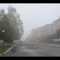 Туманное апрельское утро :: Weles