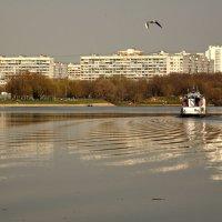 День поёт, искрится на волнах :: Ирина Данилова