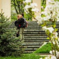 Пришла весна :: Михаил Бродский