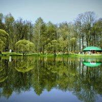 Весна ....Пробуждение :: Viacheslav Birukov