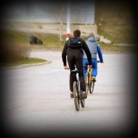 Велосипедисты :: Дмитрий Сопыряев